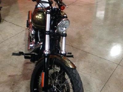 Harley-Davidson Softail Blackline 2013 420975