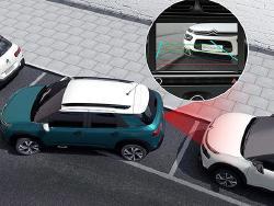 Foto 2: Citroën C4 CACTUS 2020